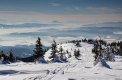 Piste dello sci, pini con le creste blu nebbiose nei precedenti fotografia stock libera da diritti