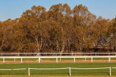 Piste di addestramento del cavallo che recintano gli alberi Fotografia Stock Libera da Diritti