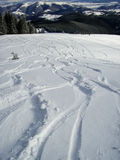 Piste di sci della montagna nella neve Immagini Stock