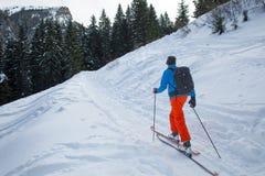 Piste di sci di Randonnee vicino alla foresta Fotografie Stock