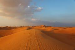 Piste di veicolo su una duna Immagine Stock