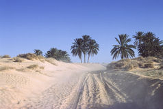 Piste du Sahara image stock