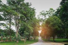 Piste en parc public avec la lumière du soleil pendant le matin Photo stock