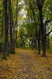 Piste en stationnement d'automne Image libre de droits