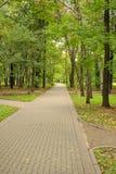 Piste en stationnement d'automne Photographie stock