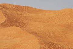 Piste nel deserto Fotografia Stock