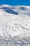 Piste nello snowscape cremoso Fotografia Stock Libera da Diritti