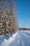 Piste nevose semplici del pneumatico - ritratto Fotografia Stock