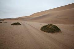 Piste par les dunes de désert en Namibie Photos libres de droits