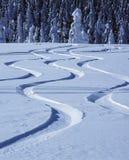 Pistes dans la neige Photos stock