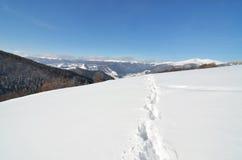 Pistes dans la neige profonde image stock