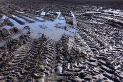 Pistes de pneu dans la boue image libre de droits