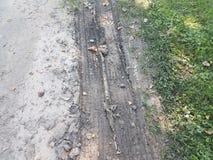 Pistes de pneu dans la boue photos libres de droits
