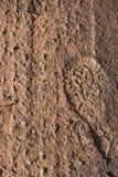 Pistes de pneu et impression de pied Images libres de droits