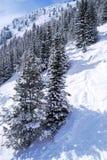 Pistes de ski en montagnes photographie stock