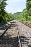 Pistes de train par les bois Photographie stock