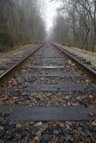 Pistes et brouillard de train image stock