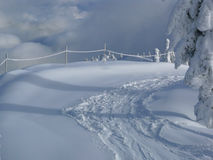 Pistes fraîches dans la neige Images stock