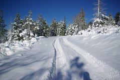 Pistes pour véhicules dans la neige fraîche Photo stock