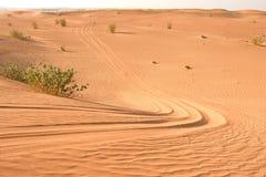 Pistes pour véhicules de dune et de sable de désert Arabe photographie stock libre de droits