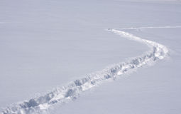 Pistes sur la neige. Photographie stock