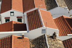 Pisticci town. Roofs  view of Pisticci old town Stock Image