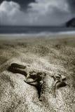 pistol Royaltyfria Foton