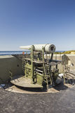 Pistola dell'artiglieria Fotografia Stock Libera da Diritti