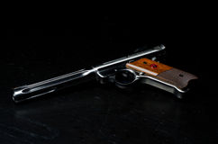 Pistola do alvo 22LR Imagem de Stock Royalty Free