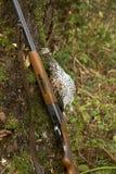 Pistola e un uccello Fotografia Stock Libera da Diritti