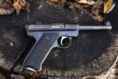 Pistolet de cible Photographie stock libre de droits