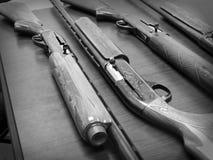 Pistolet fotografie Obraz Stock