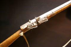 Pistolet przy Gruzińskim muzeum narodowym - Tbilisi Obrazy Royalty Free