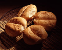 Pistolets breads. Food, gastronomy,culinary,cookery Royalty Free Stock Images