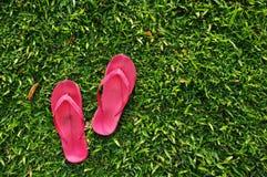 Pistoni sul campo di erba Immagini Stock