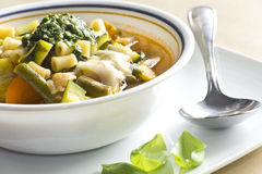 Pistou Soup. Soupe au pistou, French vegetable soup with pesto and basil Stock Image