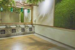 Pisuary w toalecie obraz royalty free
