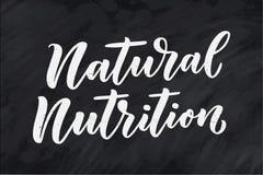 Piszący list wycenę, wielki projekt dla żadny zamierza Wektorowy slogan Smakowity śniadaniowy diety jedzenie Paśnik, zdrowy odżyw royalty ilustracja