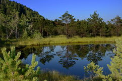 Pit bog Mohos Romanian Royalty Free Stock Photo