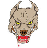 Pit bull. Easy to resize or change color vector illustration