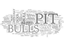 A Pit Bull Could Be The Right Dog For You Word Cloud Stock Photography