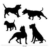 Pit Bull Dog el perro es grande y pequeño ilustración del vector