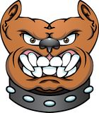 Pit Bull Dog Head vector illustration