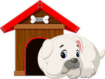 Pit Bull Dog. Illustration of Pit Bull Dog stock illustration