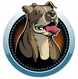 Pit bull dog with the open mouth and tongue, vector logo. Pit bull dog with the open mouth and tongue, vector logo stock illustration