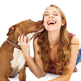 Pit Bull Kissing Teenage Girl Royalty Free Stock Image