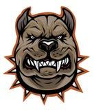 Pit bull royalty free illustration