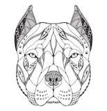 Pit bull terrier head zentangle stylized, vector, illustration