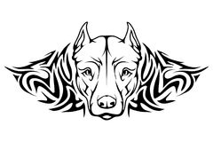 Pit bull terrier icon. Pit bull terrier tattoo logo Stock Photos