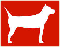 Pit bull terrier icon Stock Images